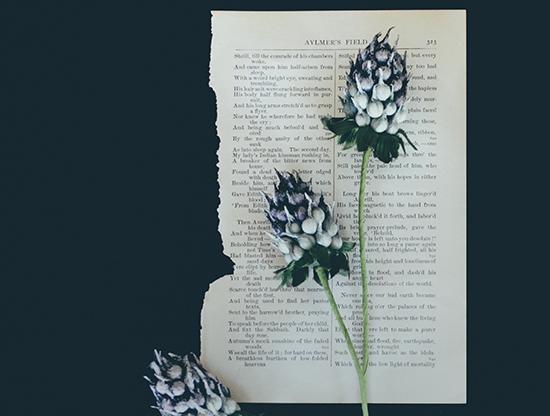 Le courrier du cœur, première édition