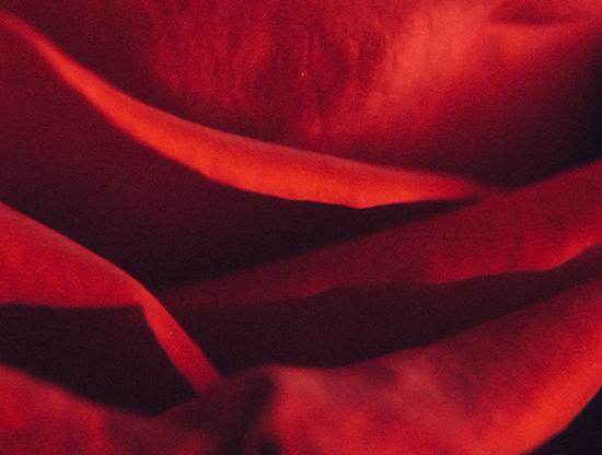 Les plus beaux poèmes d'amour à lire et relire